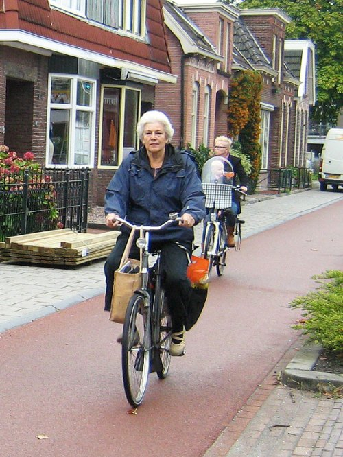 A middle-aged woman rides a bike on a cycle-path in the Netherlands. She has a shopping bag on her handlebars and flowers in the panniers on the rear of the bike.